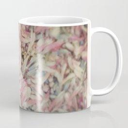 Mixed petals Coffee Mug