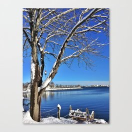 Buoy Hanging from a Snow-Kissed Tree in Maine (2) Canvas Print