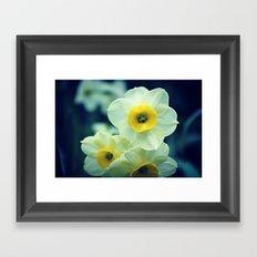 Spring Flower 02 Framed Art Print