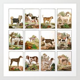 Dogs In Vintage Style Art Print