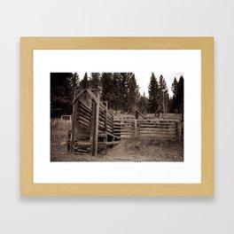 Cattle Run Framed Art Print