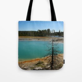 Amazing Hot Spring Colors Tote Bag