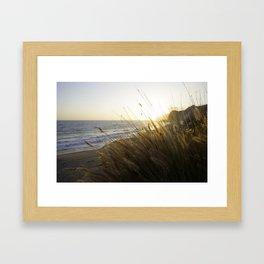 Sunset Grass Framed Art Print