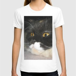 Cat Study T-shirt