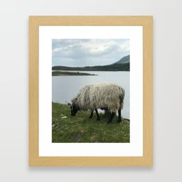 Ireland 99 Framed Art Print