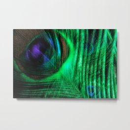 Peacock dreams Metal Print
