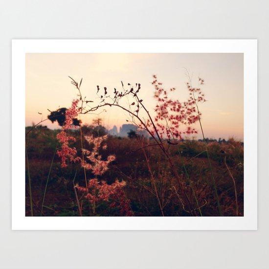 Desert Sakura Art Print