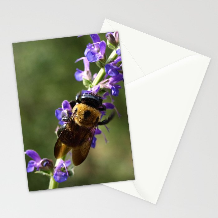 Bumble Bee on purple Stationery Cards