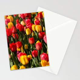 Peace, Love And Tulips Stationery Cards