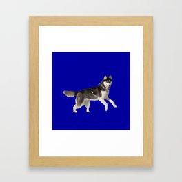 BLue dog Framed Art Print