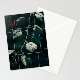 I n   F o c u s Stationery Cards