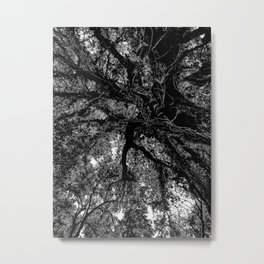 In the giant shadow Metal Print
