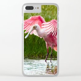 Roseate Spoonbill Clear iPhone Case