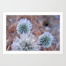 nature tint Art Print