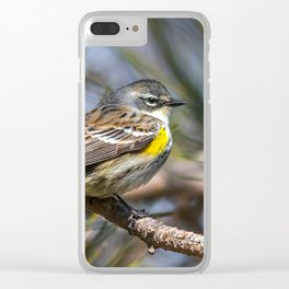 Yellow Rumped Warbler in May Clear iPhone Case