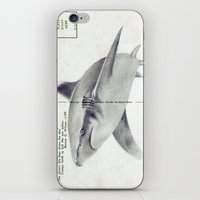 postcard iPhone & iPod Skins featuring Postcard Shark by Sarah Sutherland