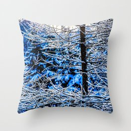 Young Larix Tree In The Winter Forest At Sunset Throw Pillow