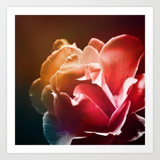Dream Flower 2 Art Print