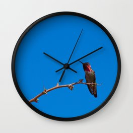 Beautiful Hummer - II Wall Clock