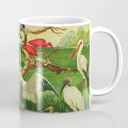 Amazonian birds by Göldi & Emil August Brazil Colorful Tropical Birds Illustration Flamingos Coffee Mug