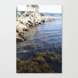 Cold Maine Waters Canvas Print