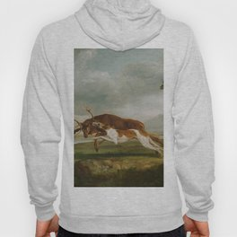 George Stubbs - Hound Coursing a Stag Hoody
