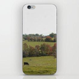 Donkeys in an Autumn Landscape iPhone Skin