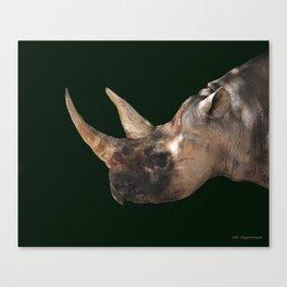 Perfect Horns Canvas Print