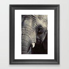 ELEPHANT OH MY! Framed Art Print