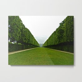 Between The Hedges Metal Print
