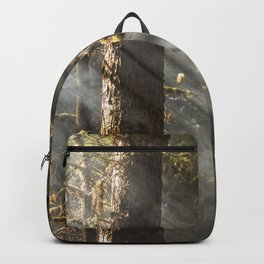 Beautiful Trees / 2 Backpack