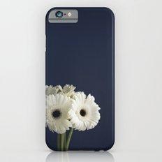 Gerbera Daisies Slim Case iPhone 6s
