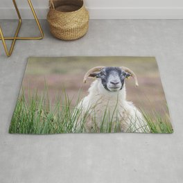 Sheep portrait Rug