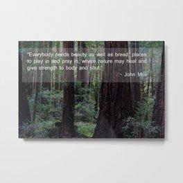 Muir Wood Quote 2 Metal Print