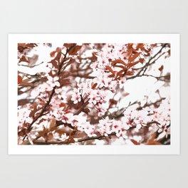 spring flowers pink Art Print