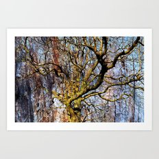 Magic Dream of a Tree Art Print