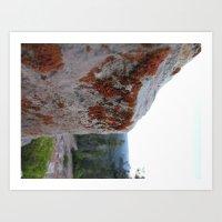 Lichen It Art Print