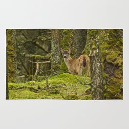 Baby Deer Photography Print Rug
