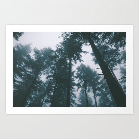 Forest XIII Art Print
