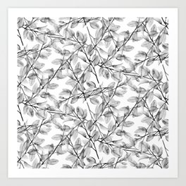 Delicate Leaves In Black And White Art Print