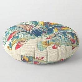 Fish Classic Designs 3 Floor Pillow