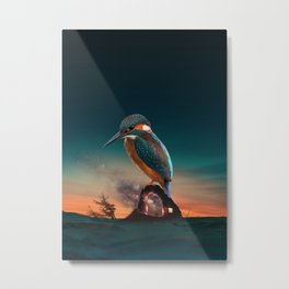 Bird over a cave in the evening Metal Print