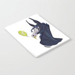 Eli Notebook