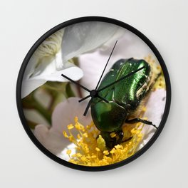 Rose Beetle Insect Wall Clock