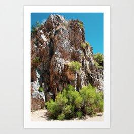 Desert Canyon Wall Art Print