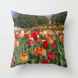 Fabulous tulip park Throw Pillow