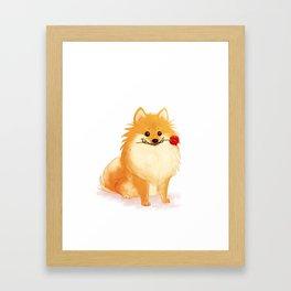 Charming Pomeranian Framed Art Print