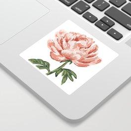 Peony bloom Sticker