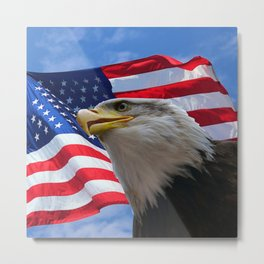 American Flag and Bald Eagle Metal Print