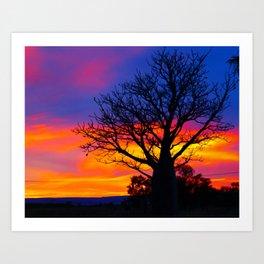 Pinks  n Purples thu Boab Art Print